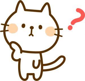 ネコ 疑問