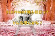WordPress テーマ ELEPHANT 購入 使い始める